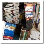 bibliothek04